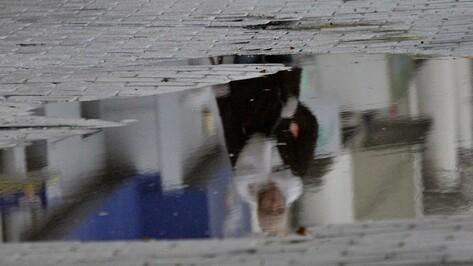 Спасатели снова предупредили воронежцев об усилении ветра и дождя
