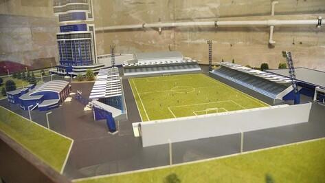 Желающих обновить за 700 млн рублей воронежский стадион «Факел» не нашлось