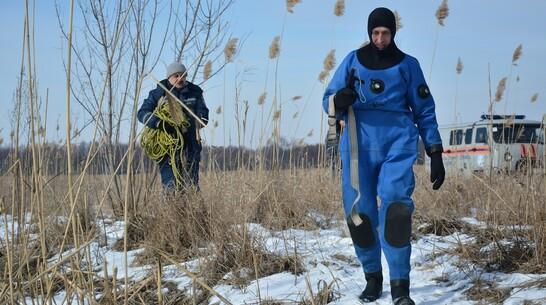 Поиски провалившегося под лед ребенка возобновят в Воронежской области после потепления