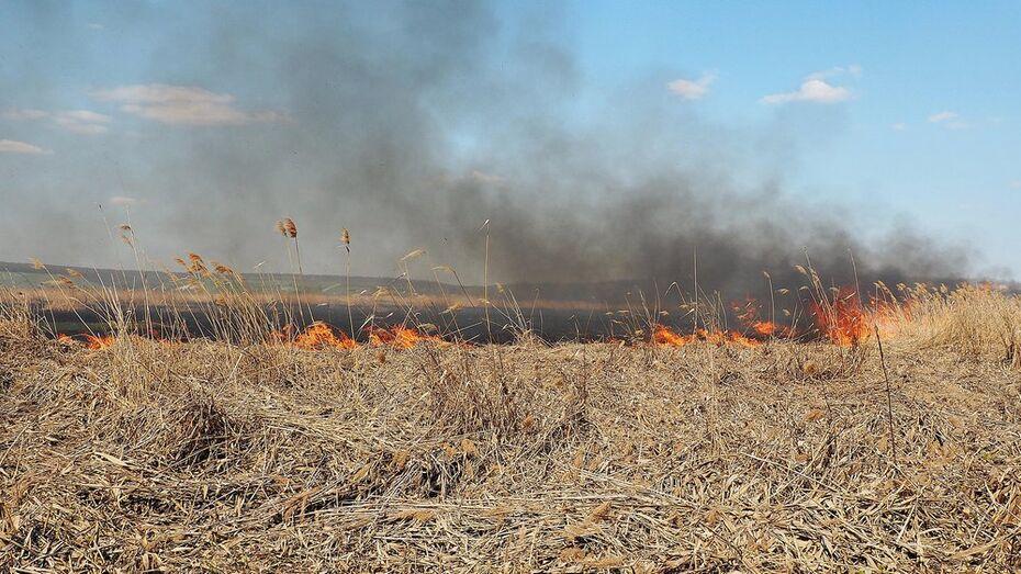 В Бутурлиновском районе за два дня случилось 14 пожаров