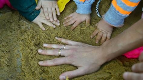 Субсидии Воронежской области для многодетных семей выросли до 442 млн рублей