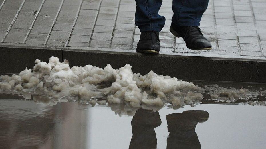 Воронежские коммунальщики объяснили лед на тротуарах дефицитом техники и людей