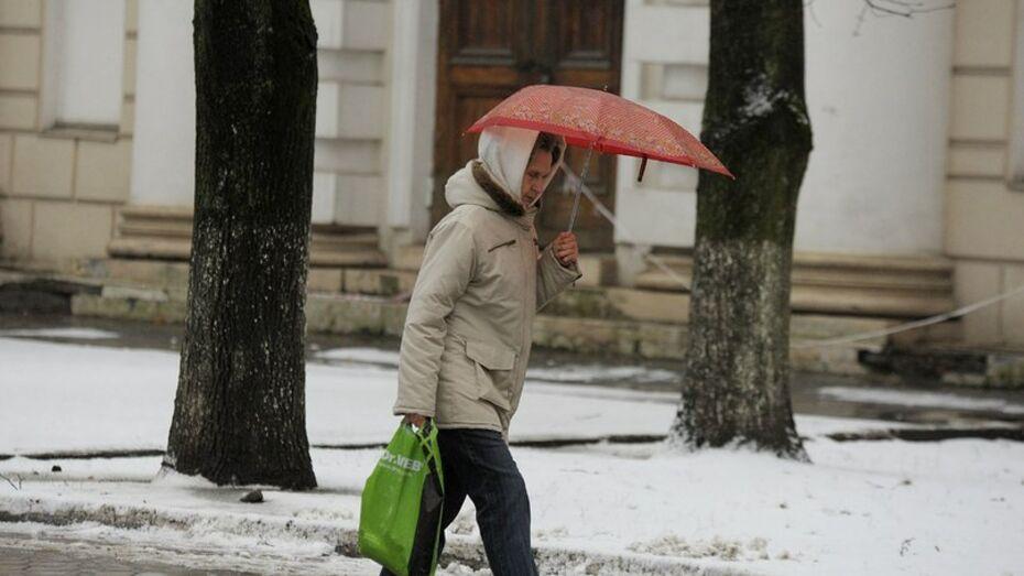 Обильные осадки пройдут в Воронеже на новой неделе