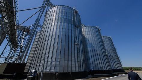 Элеватор и комбикормовый завод открылись в Воронежской области