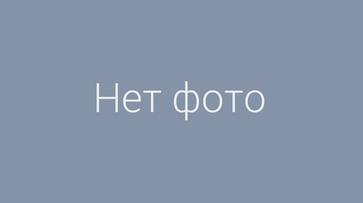В Воронеже родители будущих первоклассников провели сутки в очереди у школы на Шишкова
