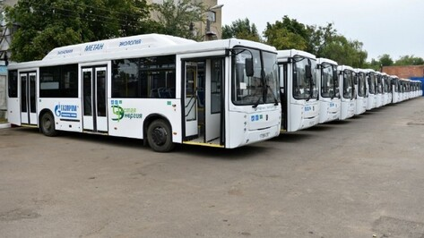 Мэрия Воронежа купила 35 автобусов на газе за 285 млн рублей