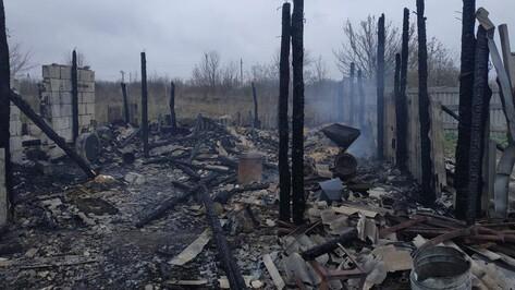 Более 100 животных погибли в ночном пожаре в Воронежской области