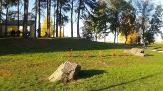 «День здоровья» пройдет в воронежском парке «Алые паруса» 3 сентября