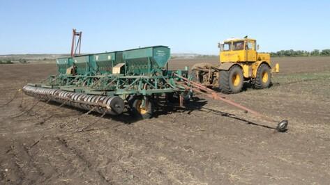 В сельское хозяйство Воронежской области в 2015 году инвесторы вложат 15 млрд руб