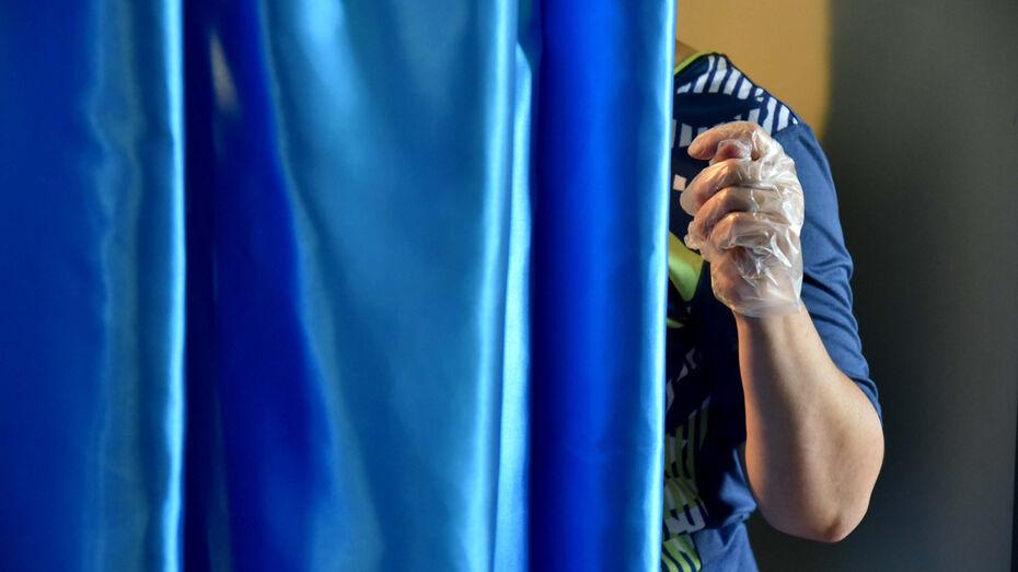 Общественная палата Воронежской области вскрыла несколько фейков в ходе выборов