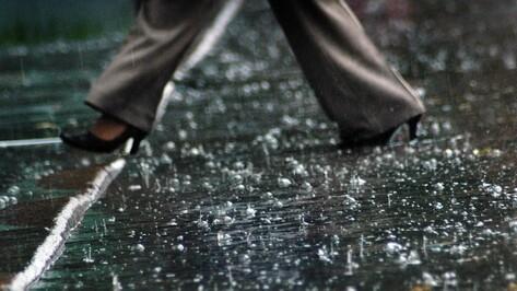 Дождливая и прохладная погода сохранится в Воронеже на выходных