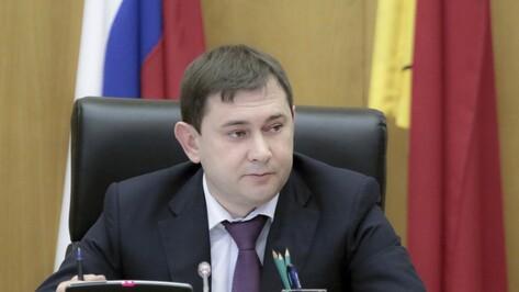 Спикер облдумы Владимир Нетесов: «Воронежская область продолжает устойчиво развиваться»