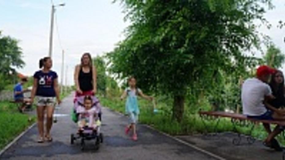 В парке Верхнего Мамона осветили темную аллею