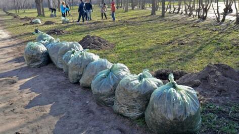В Воронежской области стартовал месячник благоустройства