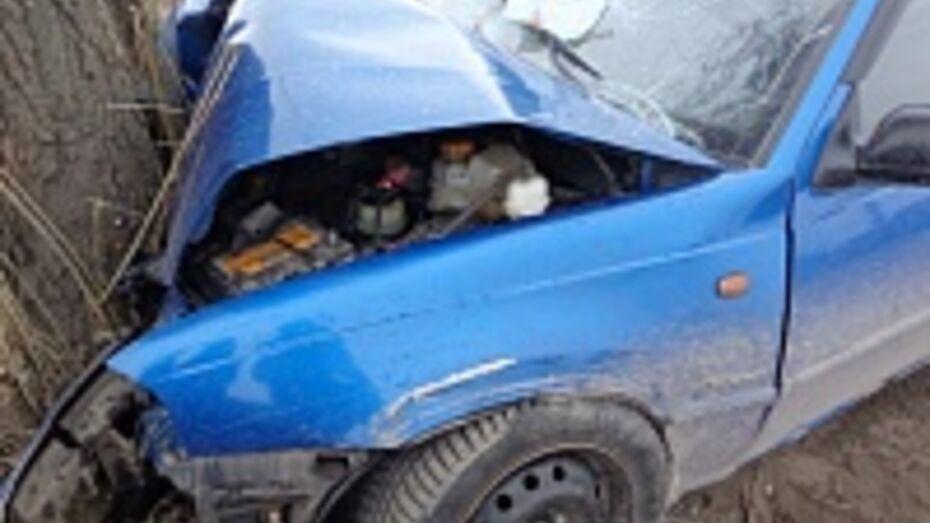 Вчера в ДТП в Воронежской области были ранены 13 человек