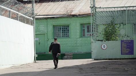 В Воронежской области попали под амнистию 2799 человек