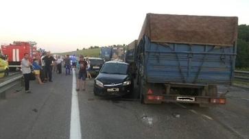 В Воронежской области погибли 2 человека в массовом ДТП на трассе М4 «Дон»