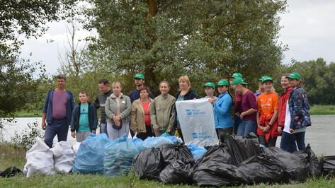 Верхнемамонцы вместе с воронежскими волонтерами очистили берег Дона