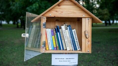 Воронежский фотограф хочет развесить в парках библиоскворечники