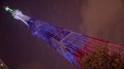 Триколор украсит воронежскую телебашню в День народного единства