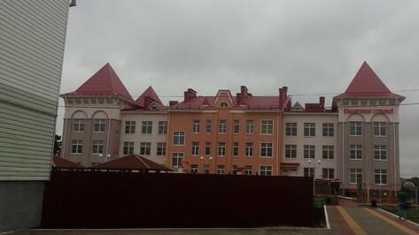 В Воронежской области открыли детский сад на 210 мест