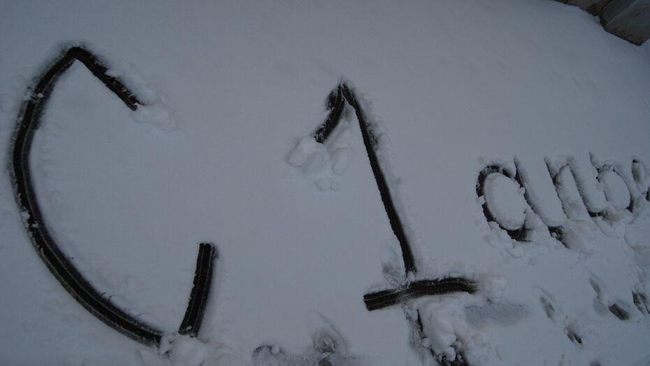 В Бутурлиновку 1 апреля вернулась зима