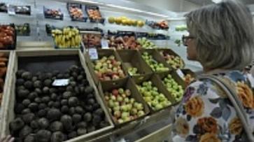 Продукты в Воронежской области подорожали на 8,7 % с начала года