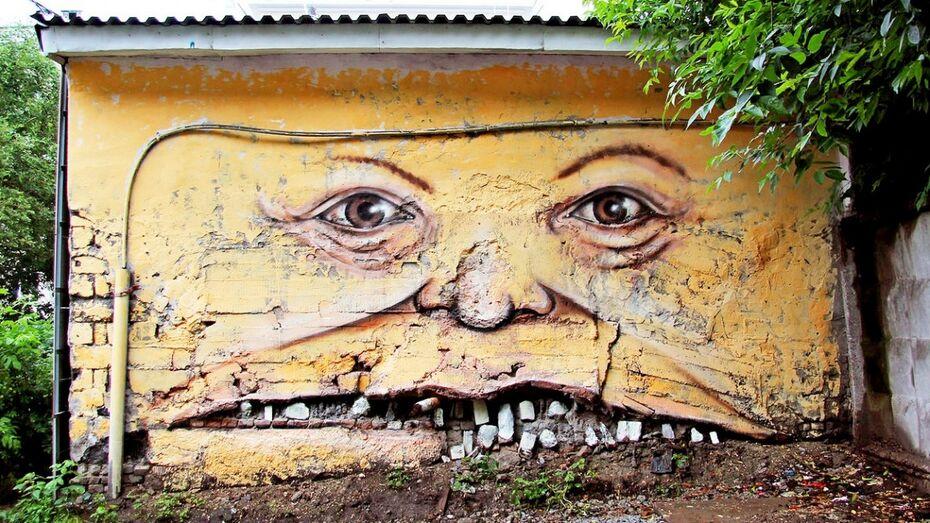 Автор «улыбающихся домов» Никита Nomerz расскажет воронежцам об уличном искусстве