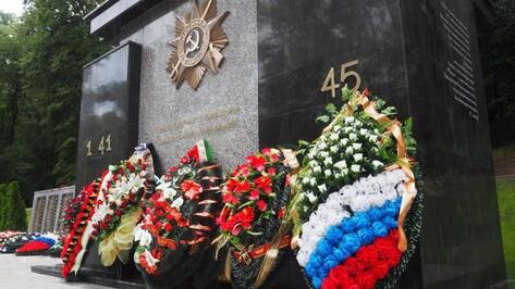 Мэрия Воронежа оценит повреждения мемориала в парке «Динамо»