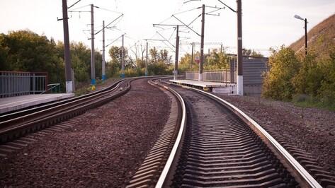 Расписание и маршрут 3 электричек в Воронежской области изменят на месяц