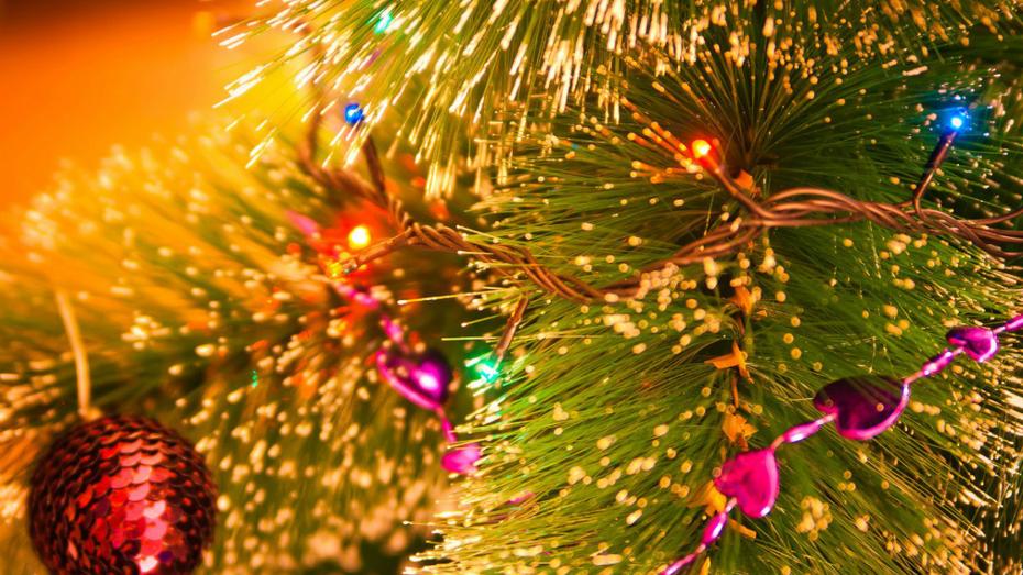 Сенатор предложил сократить новогодние каникулы в 2021 году