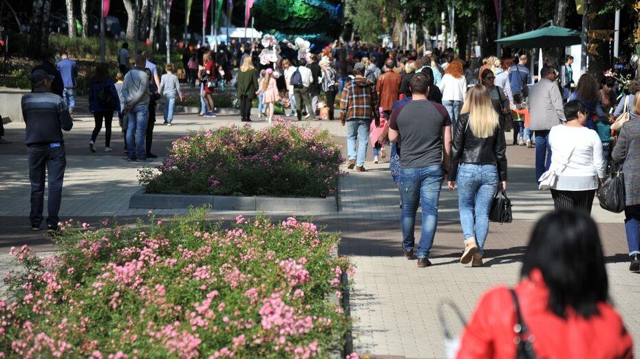 Врачи бесплатно выявят риски инсульта у воронежцев в День города