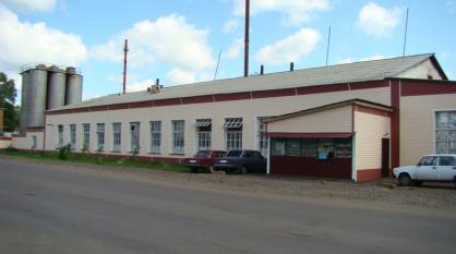 Единственный в райцентре Воронежской области хлебозавод прекратил работу