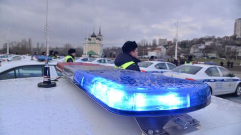 Воронежская полиция рассказала, сколько пьяных водителей поймали на дорогах в праздники