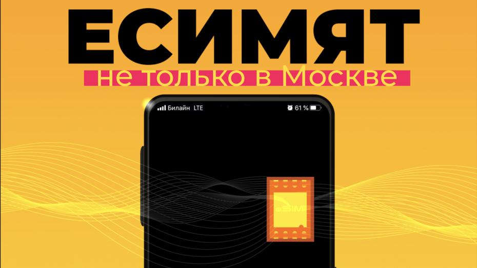 Билайн начал подключать воронежцев к виртуальным SIM-картам