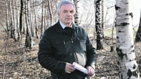 В панинском Прибитюжье в апреле будут заложены участки соснового и березового леса