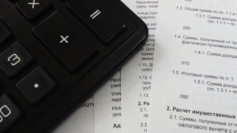 Успеть до зимы. Что нужно знать воронежцам об уплате налога на имущество