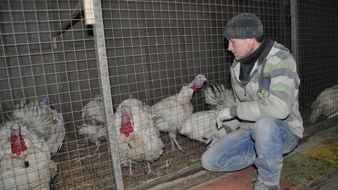 Павловчане предложили Воронежскому зоопарку птиц и деньги