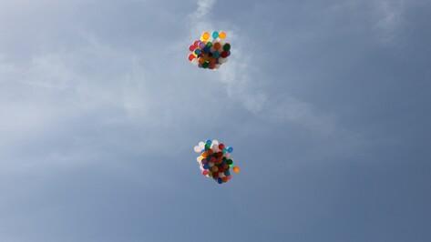 Акция «Разноцветное детство» состоится в воронежском парке «Алые паруса»