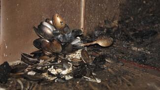 Из двух больниц выписали 14 пострадавших при пожаре в воронежском интернате