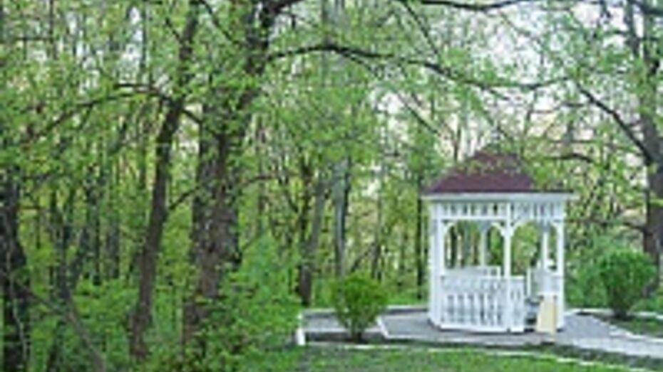 Мэрия Воронежа готовит перечень зеленых зон, которые в 2014 году получат статус особо охраняемых природных территорий городского значения