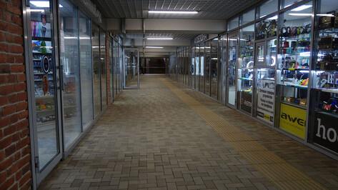 Восстановят мозаичное панно в подземном переходе у башни ЮВЖД в Воронеже
