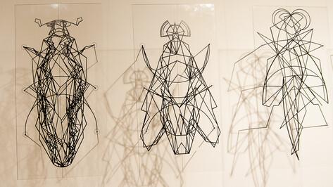 В галерее Х.Л.А.М. выставили мягких пчел и жуков из металла и пластика