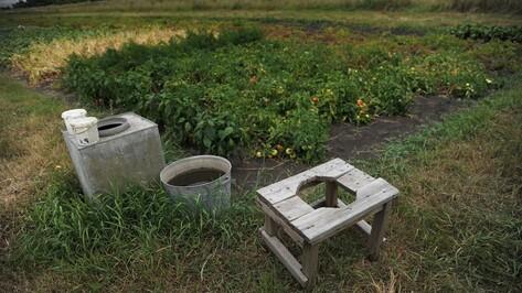 В Воронежской области 3-летний мальчик утонул в яме для полива огорода