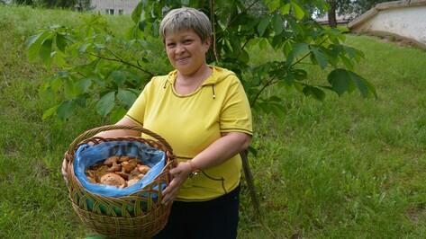 После дождей поворинцы отправились на сбор грибов раньше срока