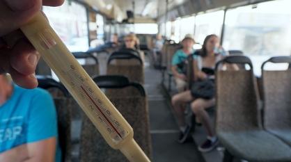 Сильная жара придет в Воронеж на рабочей неделе