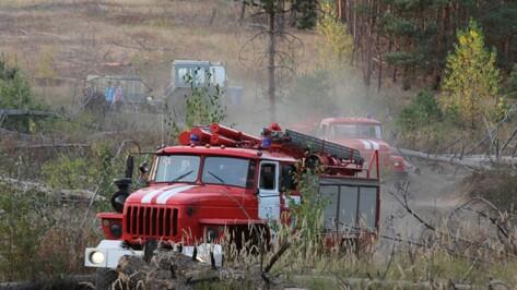 Площадь ландшафтных пожаров в Воронежской области выросла вдвое