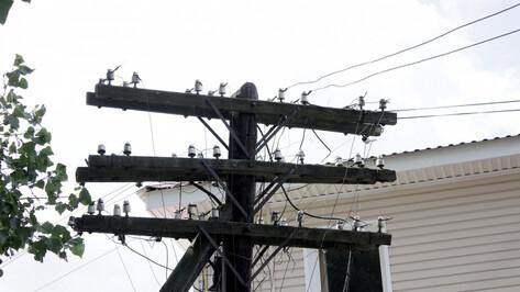 В 3 районах Воронежской области из-за ураганного ветра пропал свет