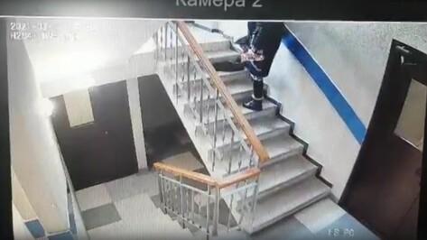 На камеры попало убийство кота жительницей Воронежа