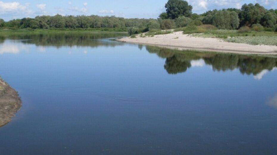 В Лискинском районе рыбаки выловили из реки человеческий череп